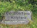 Coillidh Fana (Killyfana) - geograph.org.uk - 1865394.jpg