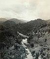 Collectie Nationaal Museum van Wereldculturen TM-60061947 Rivierlandschap van de Wog Water River Jamaica fotograaf niet bekend.jpg