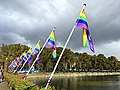 Coming-Out Day 2020 in The Hague - Rainbow flags at Hofvijver next to the national parlement of the Netherlands - img 03.jpg