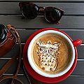 Cool owl (14319457919).jpg