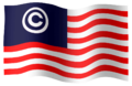 Copyrighticonflag.png