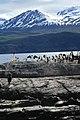 Cormoranes - panoramio.jpg