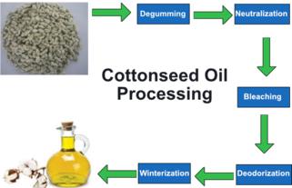 Cottonseed oil - Wikipedia