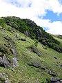 Crag Druim Righeanaich - geograph.org.uk - 920897.jpg