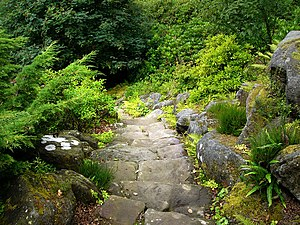 English: Cragside Estate, rock garden