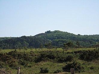 Creech Barrow Hill - Creech Barrow Hill seen from the north