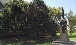 Creswell Gardens RossSmith MemorialOak AdelaideOval-looking-north.jpg