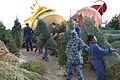Crew of Mackinaw unloads Christmas trees in Chicago 121201-G-PL299-551.jpg