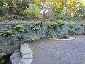 Crystal Springs Rhododendron Garden, Portland (2013) - 24.JPG
