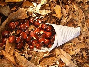 Cucurucho de castanhas Galicia