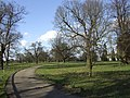 Curving driveway - geograph.org.uk - 371802.jpg