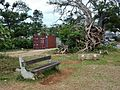 Cyclone Damage (23584488795).jpg