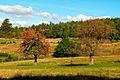 Czerniawa Zdrój-jesień - panoramio.jpg