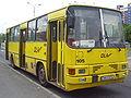 DLA Ikarus bus.jpg