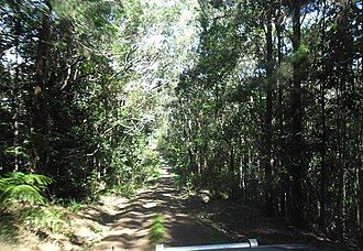 Danbulla National Park and State Forest - Image: Danbulla