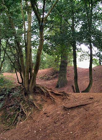Northampton - Earthworks at Hunsbury Hill, which was a settlement during the Iron Age