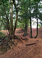 Danes Camp Earthworks Northampton.jpg