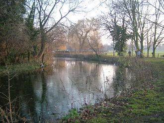 River Darent - The Darent flowing through Central Park, Dartford