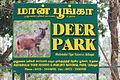 DeerPark-ooty-board.jpg