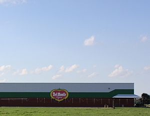 Del Monte Foods - Del Monte Foods plant