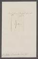 Dentalium bicarinatum - - Print - Iconographia Zoologica - Special Collections University of Amsterdam - UBAINV0274 081 10 0019.tif