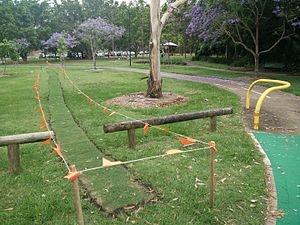 Desire path - A desired path is roped off for re-vegetation in Brisbane, Australia