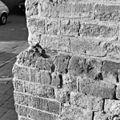 Detail verkankerde bakstenen aan de voet van de toren - Monster - 20160395 - RCE.jpg