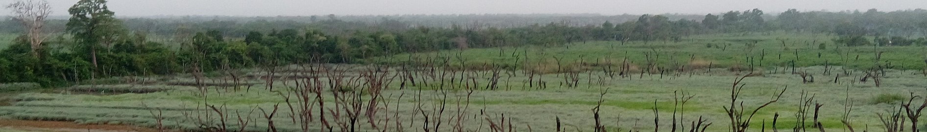 Dhudhwa Park Banner.jpg