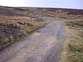 Disused quarry, Stanhope Common - geograph.org.uk - 698133.jpg