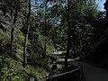 Divoká Šárka - panoramio (30).jpg