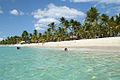 Dominicana-Isla Catalina.jpg