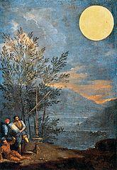 Observations astronomiques : le Soleil