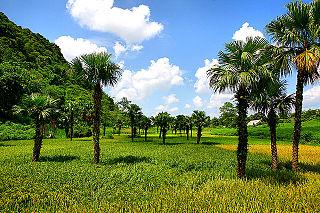 Tuyên Quang City in Vietnam
