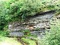 Dunaskin Glen - geograph.org.uk - 42736.jpg