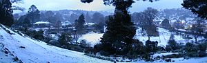 2011 New Zealand snowstorms - Snow-covered Dunedin Botanic Gardens on 14 August