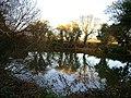 Dunmere Pond - geograph.org.uk - 92285.jpg