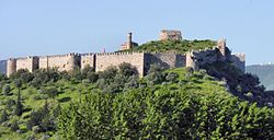 Photo of a medieval fortress on top a wooded hill