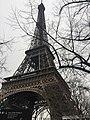 Eifel Tower in Spring in Paris.jpg