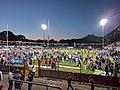 Emslandstadion nach dem Aufstiegsspiel Meppen gegen Waldhof Mannheim.jpg