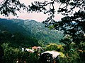 Enjoy the cool breeze while looking on the beautiful view at Mines View Park, Baguio Philippines.jpg
