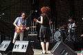 Ernesty International Donauinselfest 2014 18.jpg