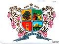 Escudo de Mirafloress (Boyaca).jpg