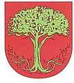 Escudo de armas da Familia Oliveira, Portugal.jpg