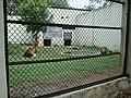 Espaço do Leão no Zoo de VR - panoramio.jpg