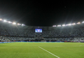 Estadio Borís Paichadze.png