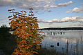 Evening on the Sheepscot River.jpg