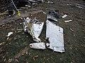 Execuflight Flight 1526 wreckage.jpg