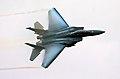 F15 - RIAT 2007 (2351979288).jpg