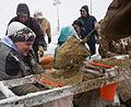 FEMA - 40431 - Mennonite volunteers fill sand bags in Minnesota.jpg
