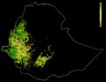 FLII Ethiopia.png